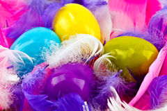 Colorful eggs and feathers. Brightly colored eggs and feathers in yellow, pink, white, blue and purple stock image