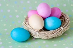 Colorful eggs in the nest Stock Image