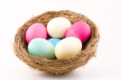 Colorful Eggs in Nest Royalty Free Stock Image