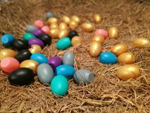 Colorful eggs in a nest Stock Image