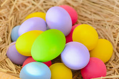 Colorful eggs in the nest - Easter concept Royalty Free Stock Photos