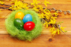Colorful eggs in nest Royalty Free Stock Images
