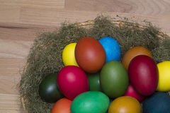 Colorful eggs in the nest Royalty Free Stock Image