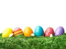 Colorful eggs Stock Photos