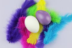 Colorful eggs with soft feathers. White and purple egg in soft feathers. Bright and happy background stock photo