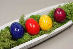 Colorful eggs. In a white bowl elongated Stock Image