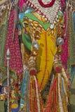 Colorful Elephant Stock Image
