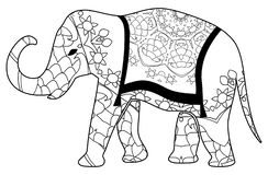Colorful elephant coloring for children and adults royalty free stock photos