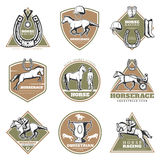 Colorful Equestrian Sport Labels Set Royalty Free Stock Images