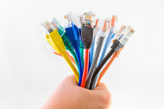 Colorful ethernet cables. With RJ-45 connectors in a bunch Royalty Free Stock Photography