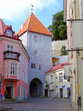 Colorful European street. A colorful street in the historic Old Town of Tallinn, Estonia. The Old Town is a newly emerging tourist destination and UNESCO World Royalty Free Stock Photography