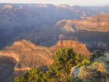 Grand Canyon in Arizona. Colorful evening scenery at the Grand Canyon National Park in Arizona, USA Royalty Free Stock Photography