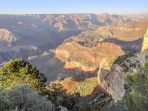 Grand Canyon in Arizona. Colorful evening scenery at the Grand Canyon National Park in Arizona, USA Stock Photography