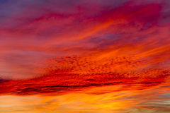 Colorful evening sky Stock Photos