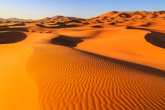 Colorful evening sun light shining on the sand dunes of the Erg Stock Photos