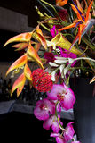 Colorful exotic floral arrangement. Colorful assortment of exotic tropical flowers make up this beautiful floral arrangement Stock Image