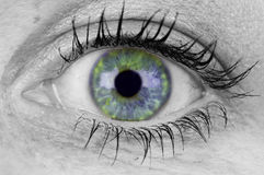 Colorful Eye Royalty Free Stock Photos