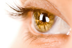 Colorful eye Stock Photo