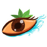 Colorful eye with natural Royalty Free Stock Photography