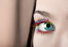 Colorful eyelashes. Girl's eye with colorful eyelashes Royalty Free Stock Image
