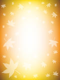 Colorful Fall Background Royalty Free Stock Images