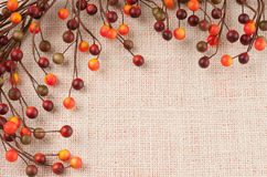 Colorful Fall Berries Against a Burlap Background Stock Photo