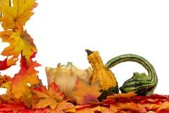 Colorful Fall Border Stock Image