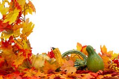 Colorful Fall Border Stock Photo