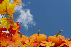 Colorful Fall Border Royalty Free Stock Photo