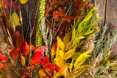 Colorful Fall Bouquet Royalty Free Stock Image