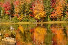 Fall colors along the Androscoggin River in Milan, New Hampshire. Colorful fall foliage along the Androscoggin River in Milan, New Hampshire, with reflections in stock images