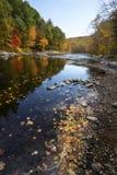 Colorful fall foliage along the Farmington River in Canton, Conn. Downriver views of vivid fall foliage along the Farmington River in Canton, Connecticut Royalty Free Stock Image