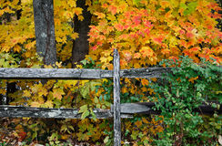 Wooden Fence In Autumn Stock Photo