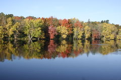 Colorful fall foliage reflected on river Stock Photos
