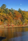 Colorful fall foliage on shoreline with reflections in Mansfield. Brilliant fall foliage on the shoreline of Mansfield Lake in Connecticut, with reflections on Royalty Free Stock Image