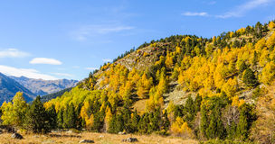 Colorful Fall landscape in the Valley of Estanyo River, Andorra Stock Image