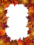 Colorful Fall Leaves Border over White Stock Photography