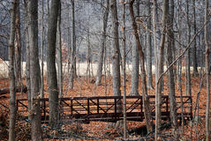 Colorful fall leaves with bridge through the woods. Stock Photography