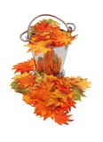Colorful fall Leaves in ice bucket Stock Photos