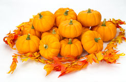 Colorful fall leaves and pumpkins Royalty Free Stock Photo