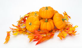 Colorful fall leaves and pumpkins Royalty Free Stock Photos