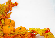 Colorful fall leaves and pumpkins stock photos