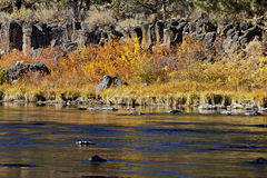 Colorful Fall River With Rocks and Shoreline Royalty Free Stock Photos
