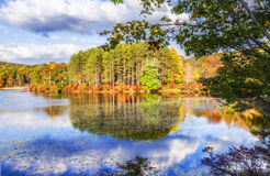Colorful fall scenery landscapes. Stock Image