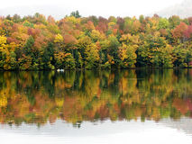 Colorful Fall Trees and Pond Stock Photo