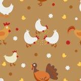 Farm birds seamless background Stock Images