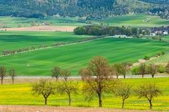Colorful farm fields landscape Stock Image