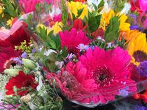 Colorful farmers market bouquets. Amazing colors of pink, yellow, white, green, red and purple flowers arranged stock images
