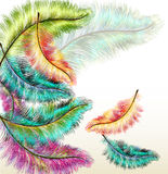 Colorful fashion background with  filigree ferns Stock Image