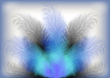 Colorful feather background Royalty Free Stock Image